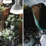 10 Tricks and Ideas to Organize the Perfect Potting Shed