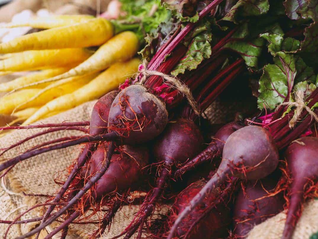 Various vegetables together