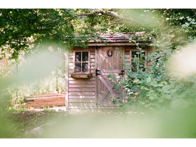 shed out in the woods