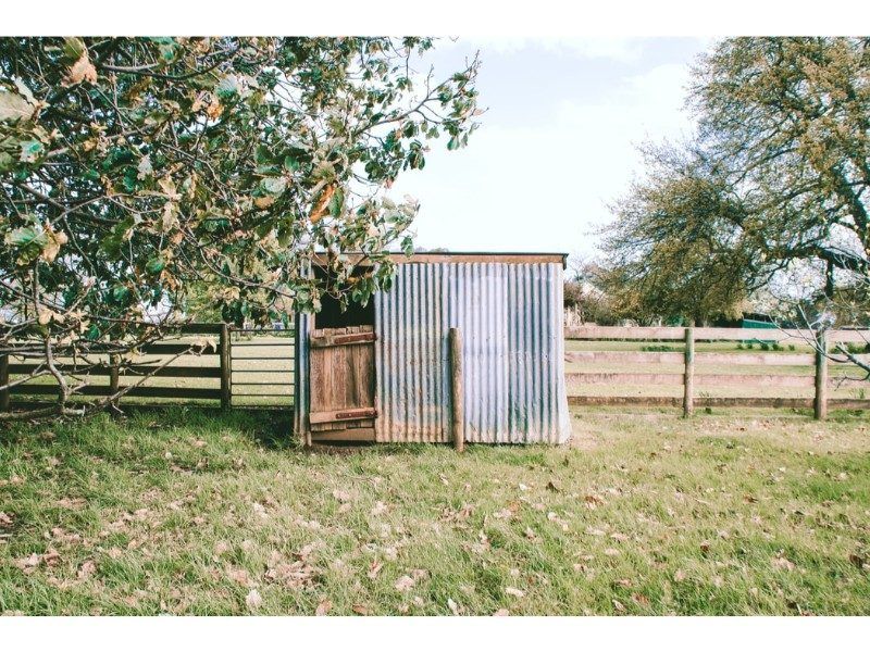 metal shed against a fence line in a field with overhanging trees