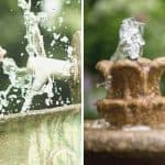 5 Reasons Why Water Features Deserve a Spot in Your Garden
