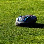 6 Clever Garden Gadgets for Avid Gardeners