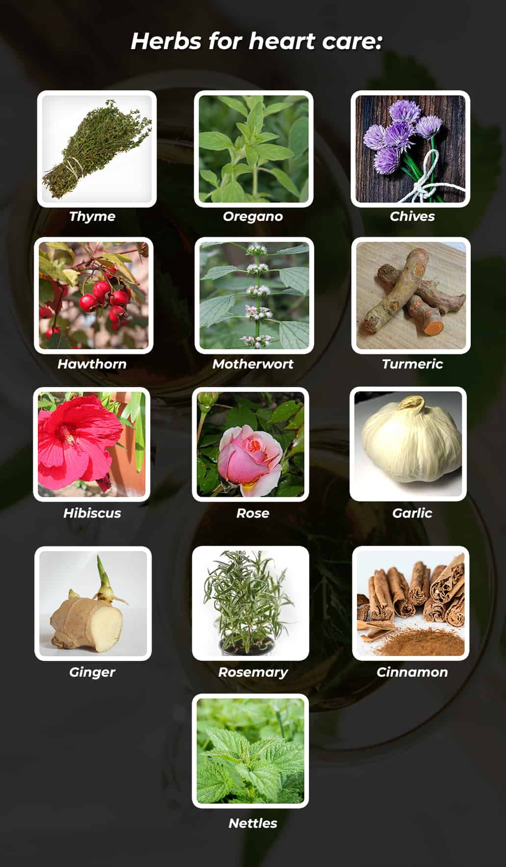 6-health-benefits-of-herbal-gardening-health-care