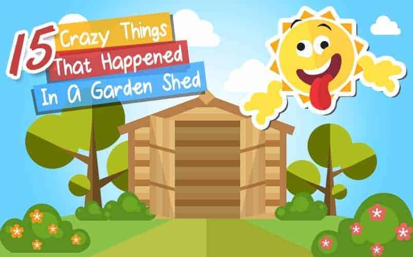 15 Crazy Things That Happened In A Garden Shed