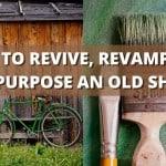 Reviving Your Shed: Treatments, Refurbishing, and Repurposing