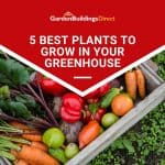 5 Best Plants To Grow In Your Greenhouse
