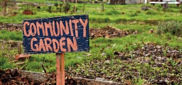 community-garden-uk