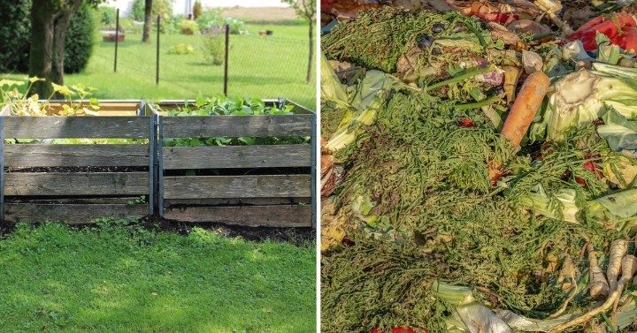 Get Your Compost Heap Cooking: The Perfect Compost Recipe
