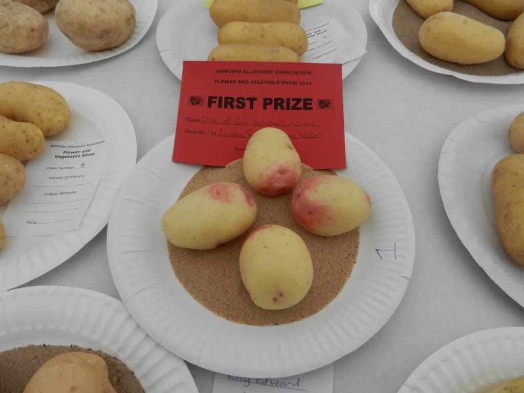 Award winning potatoes