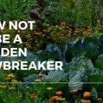 How Not To Be A Garden Lawbreaker