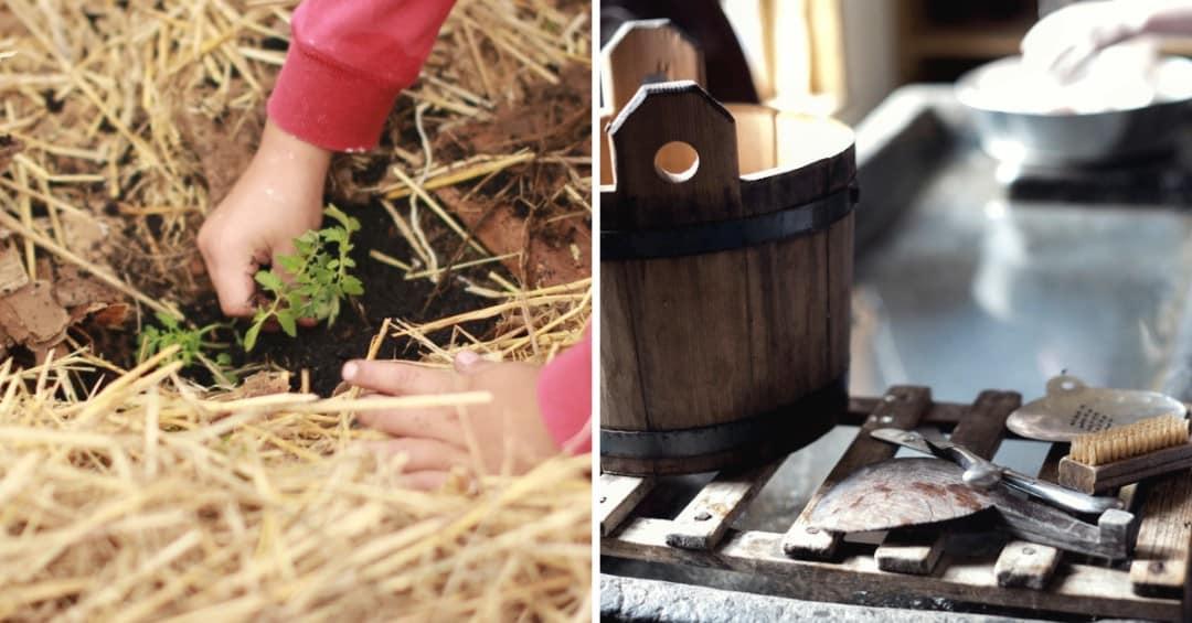 Planting Timeline: Spring Garden Preparation for Your Garden