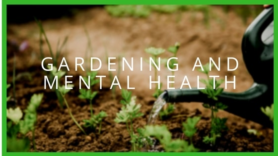 Why Gardening Is Good for Mental Health