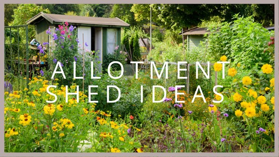 Allotment Shed Ideas