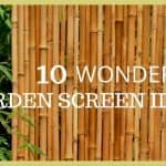 Garden Screening: 10 Wonderful Ideas