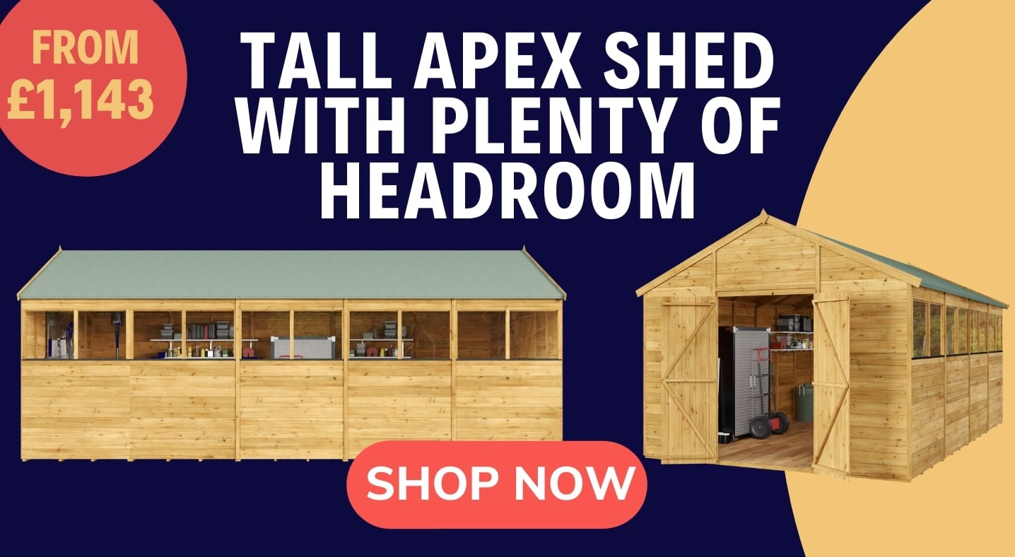Tall Apex Shed with plenty of headroom