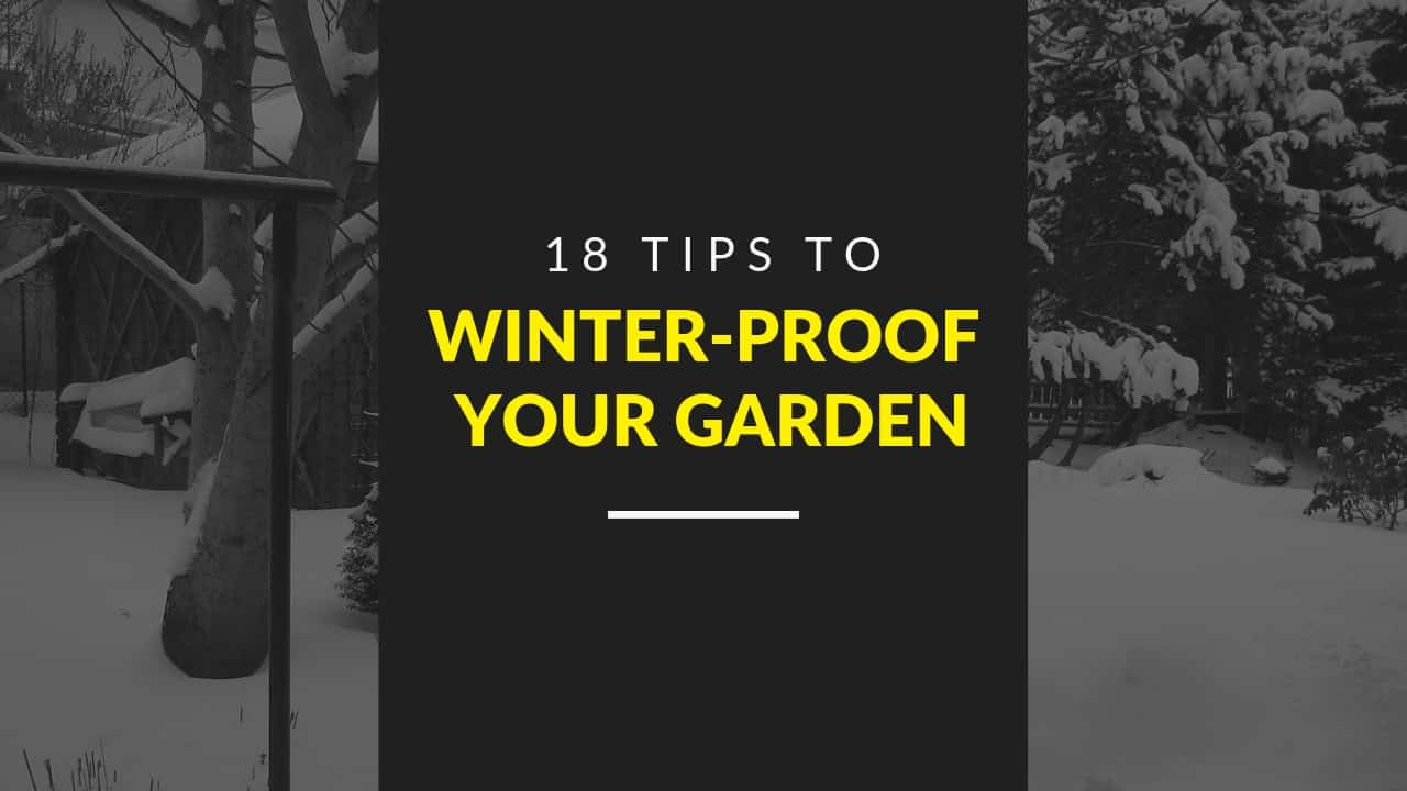 WINTER-PROOF-GARDEN-TIPS