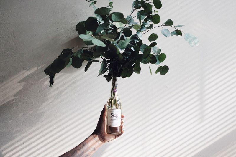 alternatives-to-plant-pots-5-plastic-bottles
