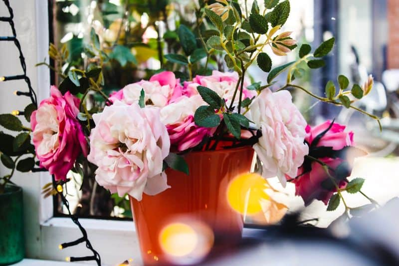 best-air-purifying-houseplants-to-detoxify-your-home-10-florists-chrysanthemum-unsplash