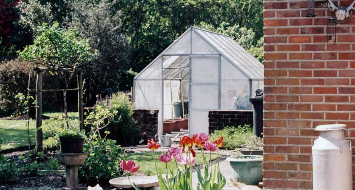Greenhouse Buying Guide
