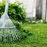 How to Deal With 5 Common Garden Nuisances