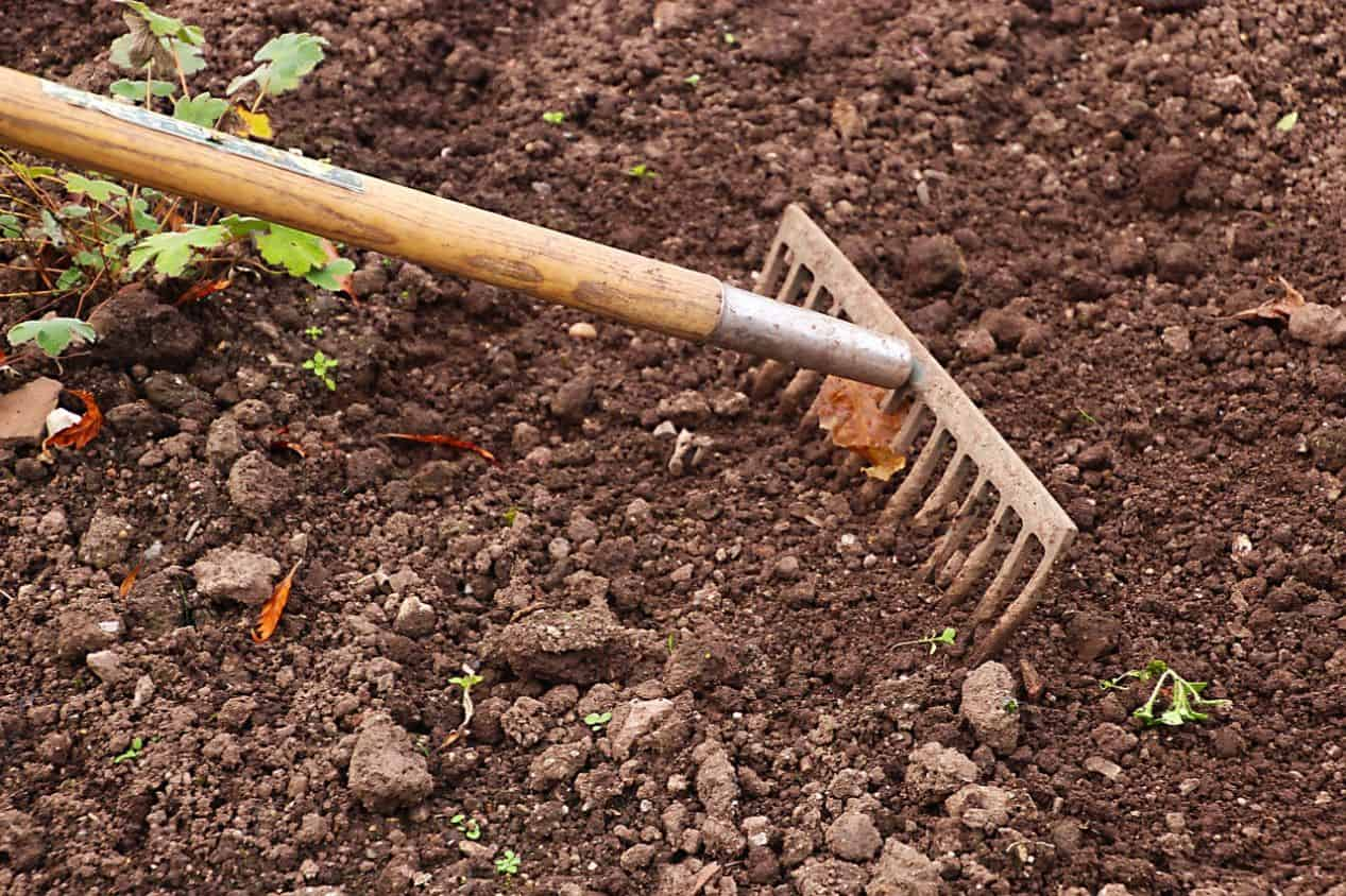 common-gardening-tools-uses-6-bow-rake