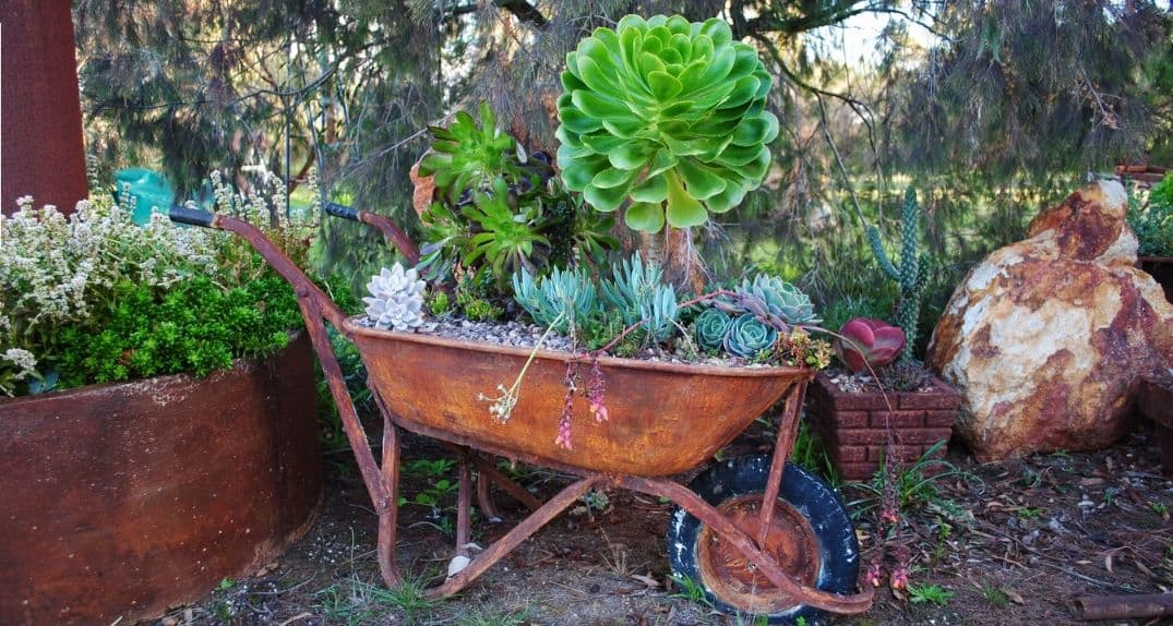diy-plant-pot-alternatives-4-wheelbarrow