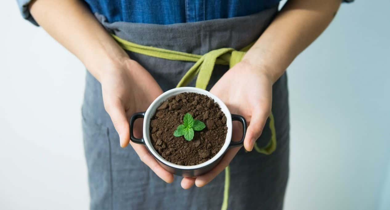 diy-seed-starting-mix-3-home-made-seed-starting-mix-recipe