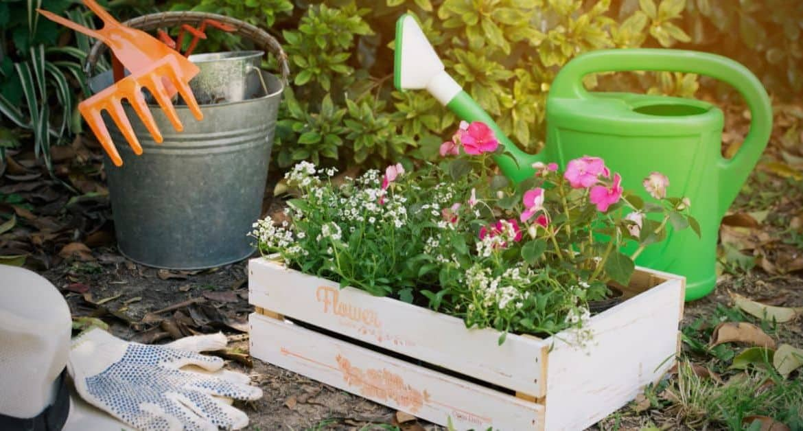 15 Effortless Garden Makeover Ideas to Spruce Up Your Garden