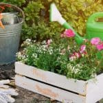 Give Your Garden an Easy Makeover with These 15 Effortless Hacks