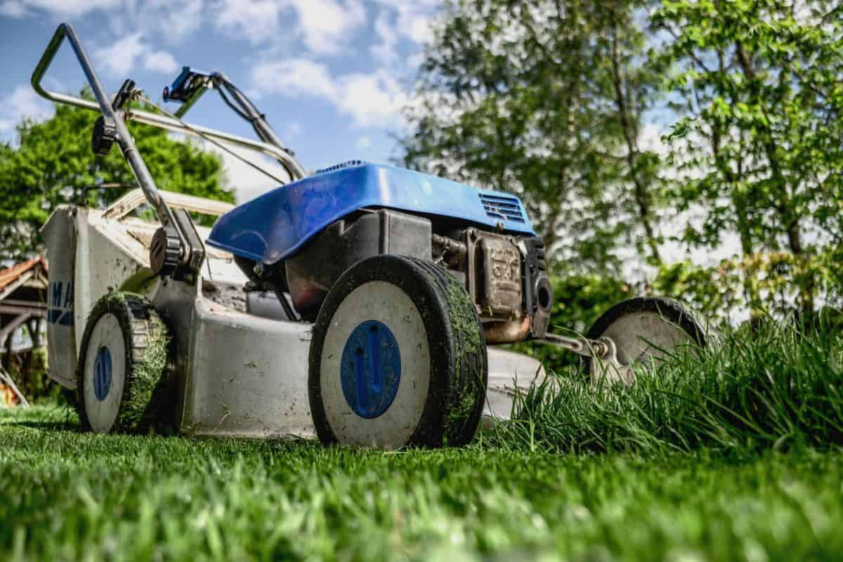 easy-garden-makeover-10-edge-uneven-lawns