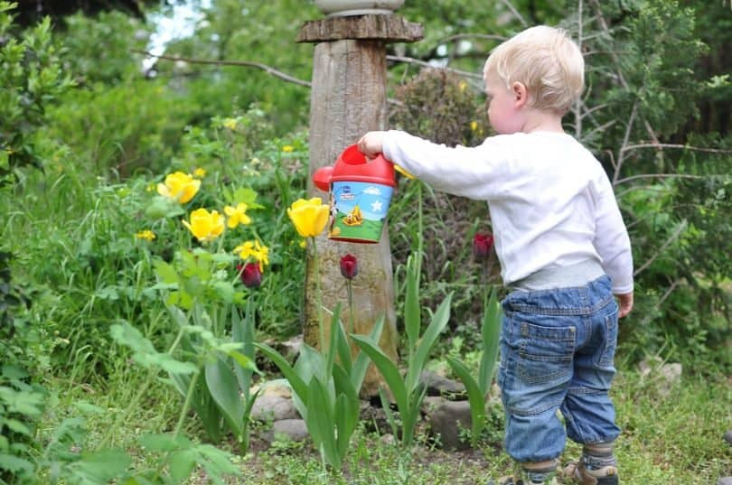 Fun Things to Do During the National Gardening Week