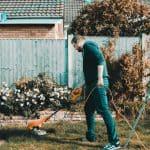 Lawn Care Tips For Your Garden: 80 Tips and Tricks