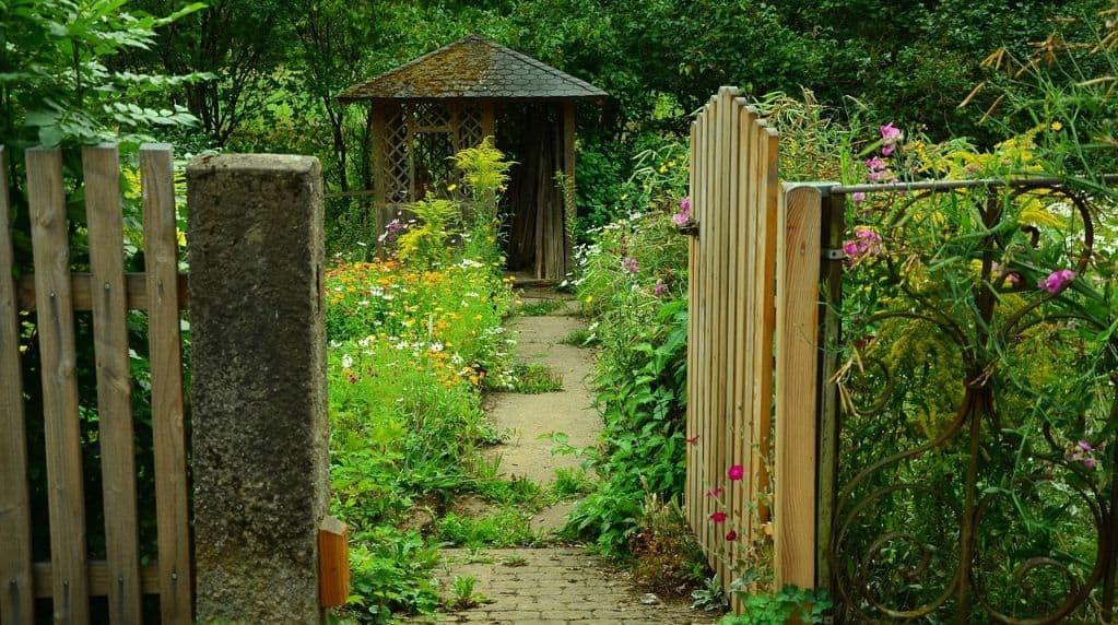 garden-wildlife-watching-room-1-create-a-welcoming-space-pixabay