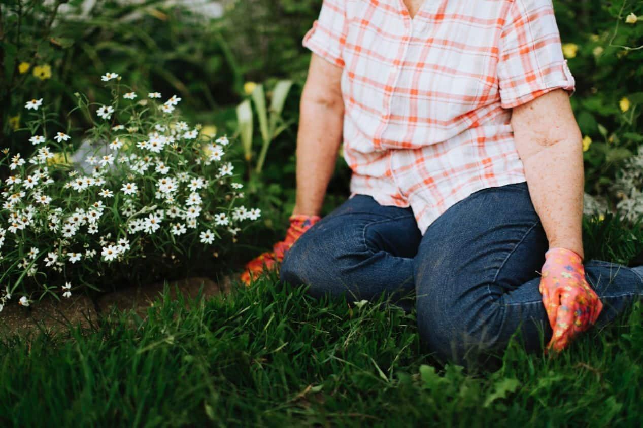 herbal-gardening-health-benefits-2-bone-health