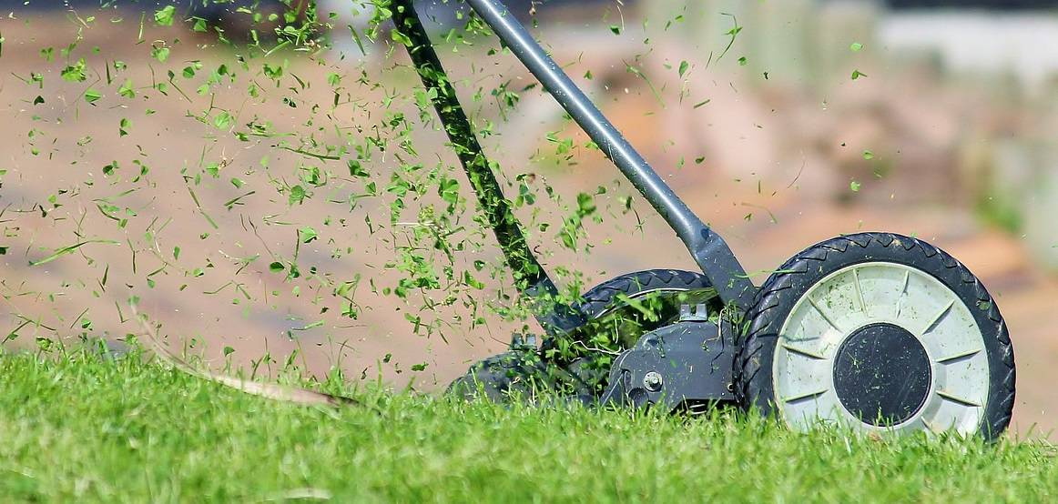 holiday-proof-your-garden-2-mow