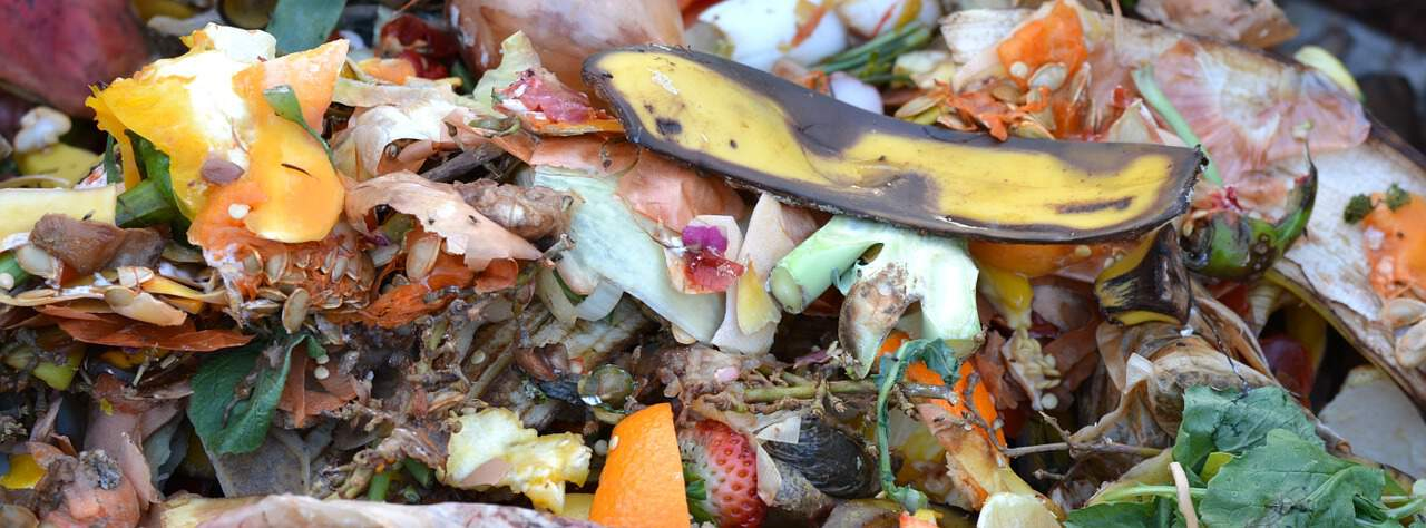 proper-composting-dos-donts-1-use-as-many-fruits-and-veggies-as-possible