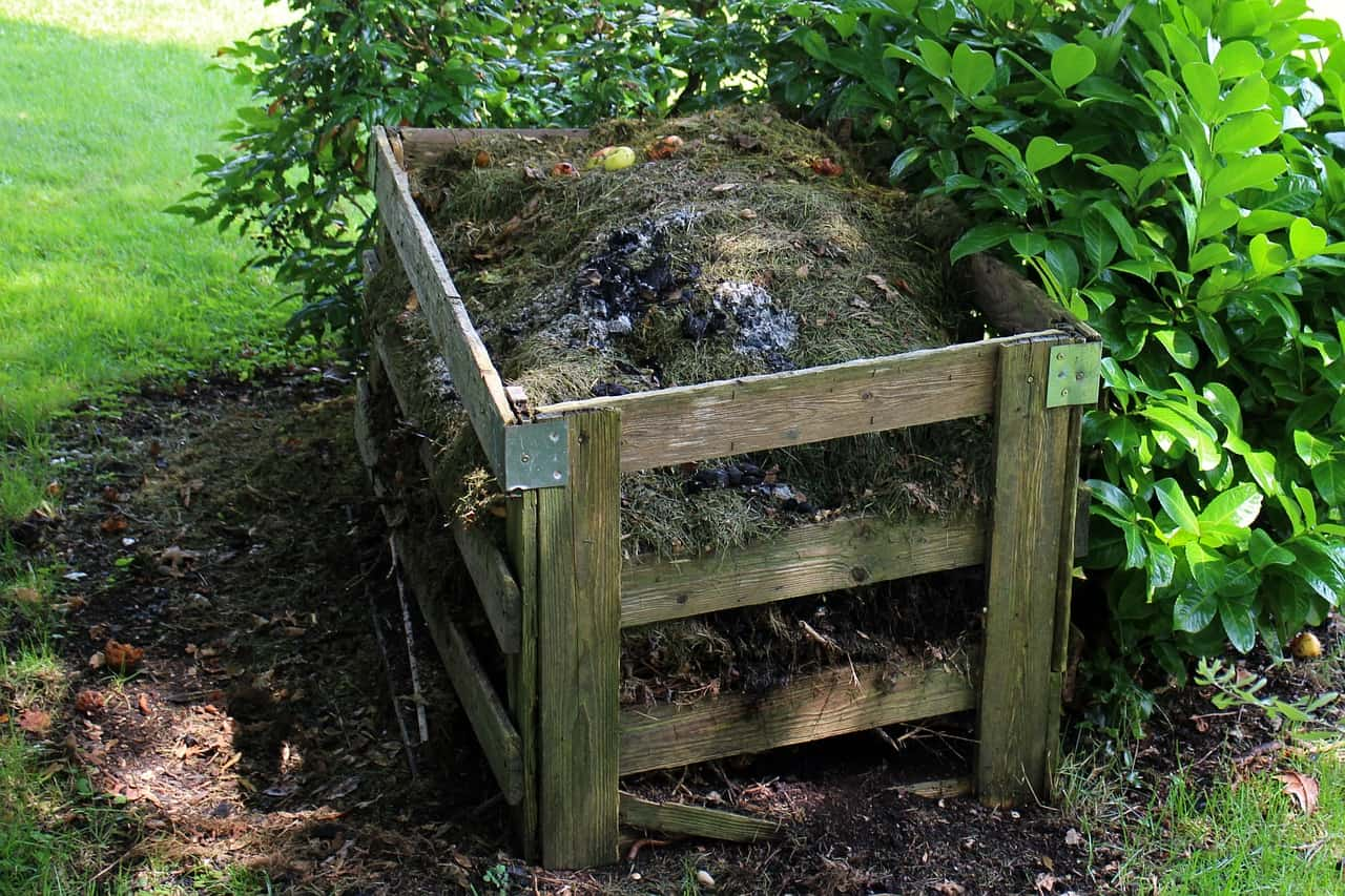 proper-composting-dos-donts-7-compact