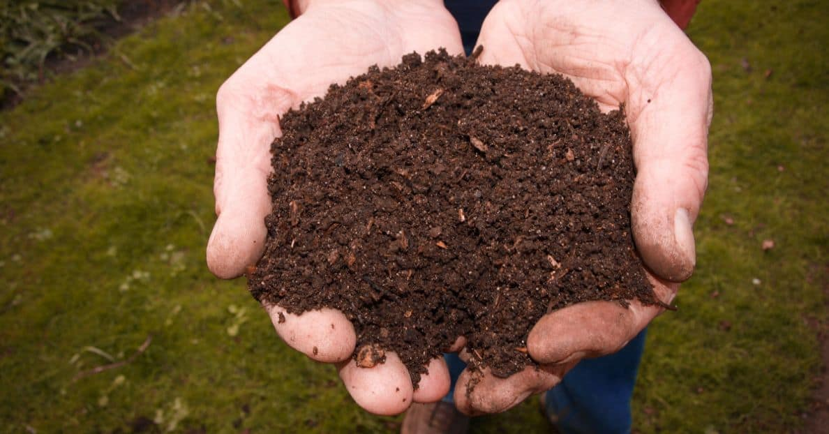 proper-composting-dos-donts