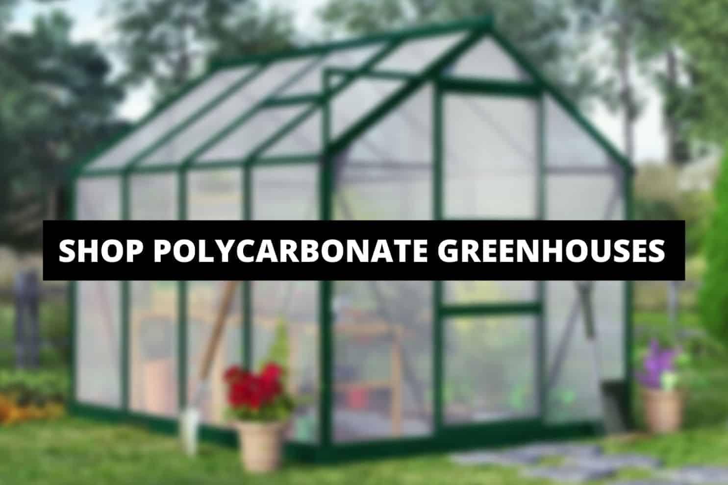 shop-polycarbonate-greenhouses