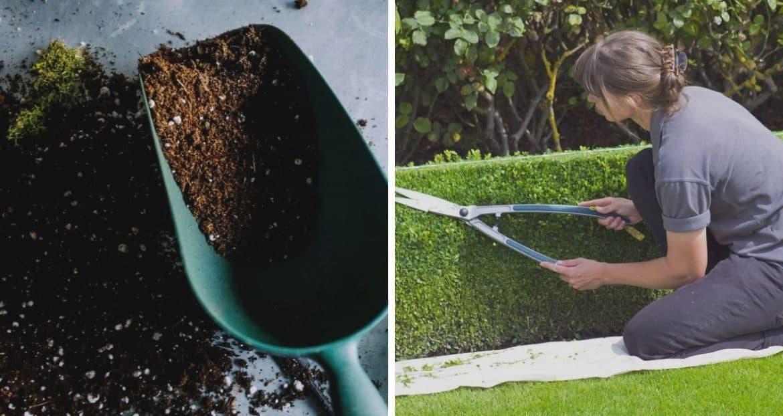 Spring Timetable: Spring Garden Preparation for Your Garden