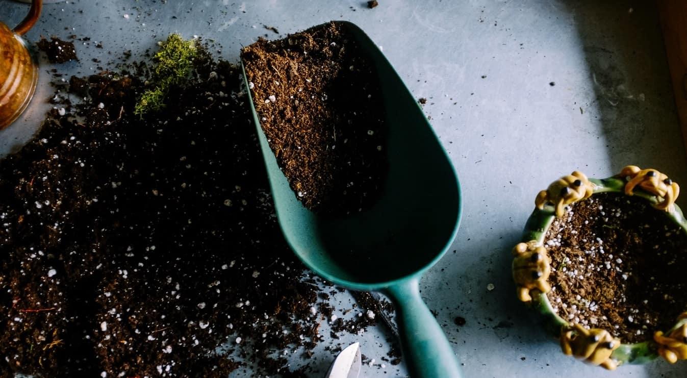 spring-garden-timetable-preparation-2-feed-your-borders