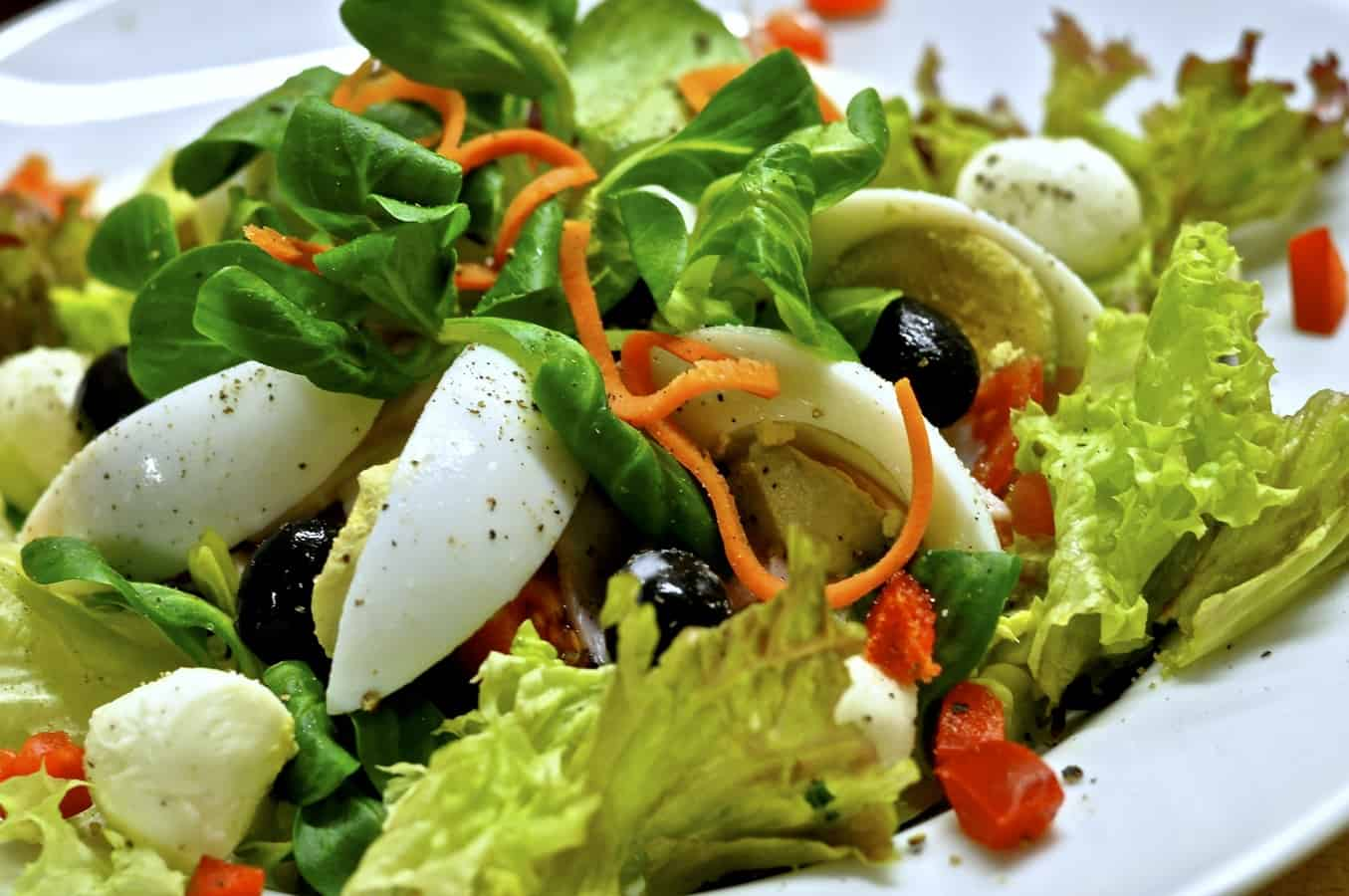 start-garden-vegetable-patch-5-fresher-meals