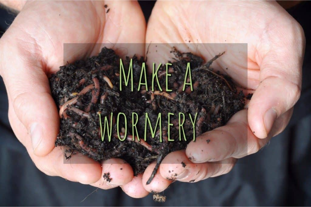 How to Make a Wormery