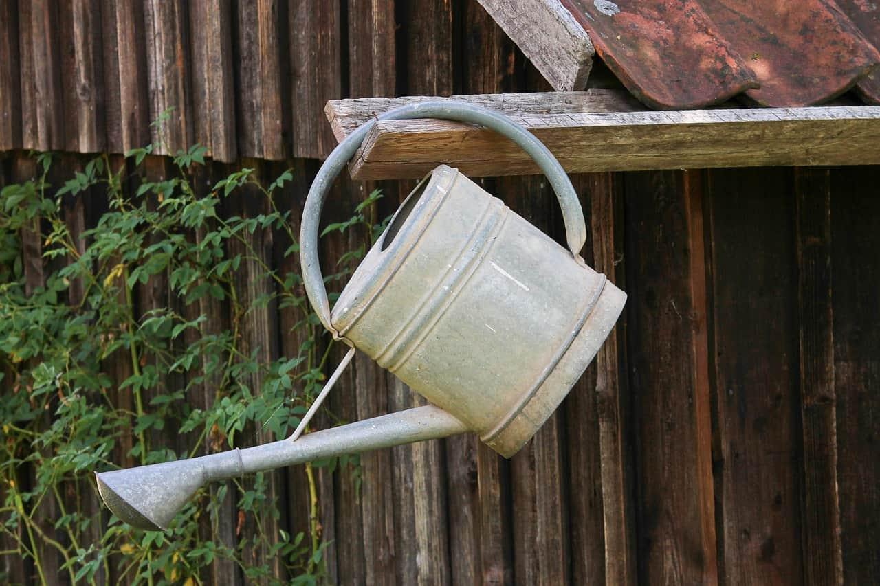strangest-garden-tools-of-yesteryear-5-seedling-watering-can
