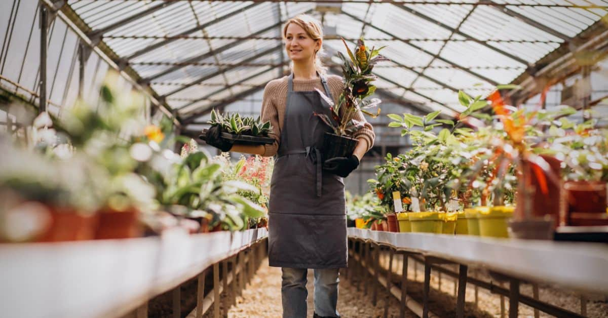 summer-greenhouse-maintenance-