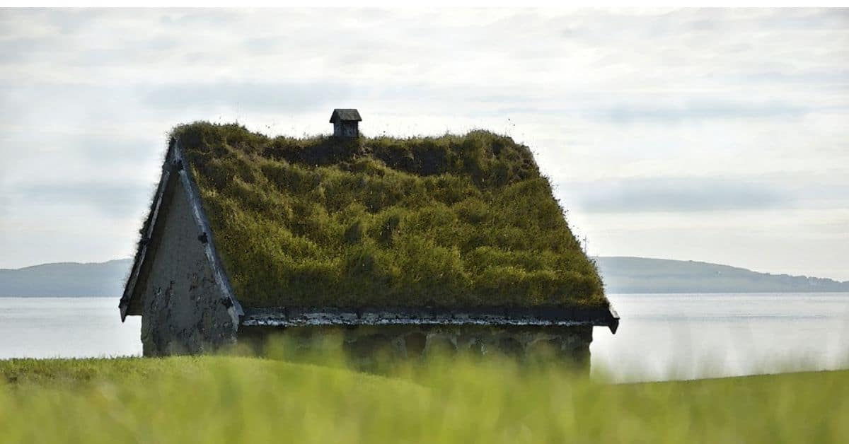 things-to-consider-when-installing-a-green-roof