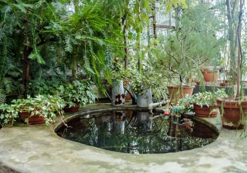 tips-garden-diy-pond-3-use-simple-shapes