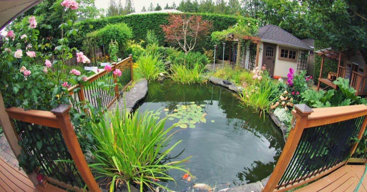 tips-garden-diy-pond