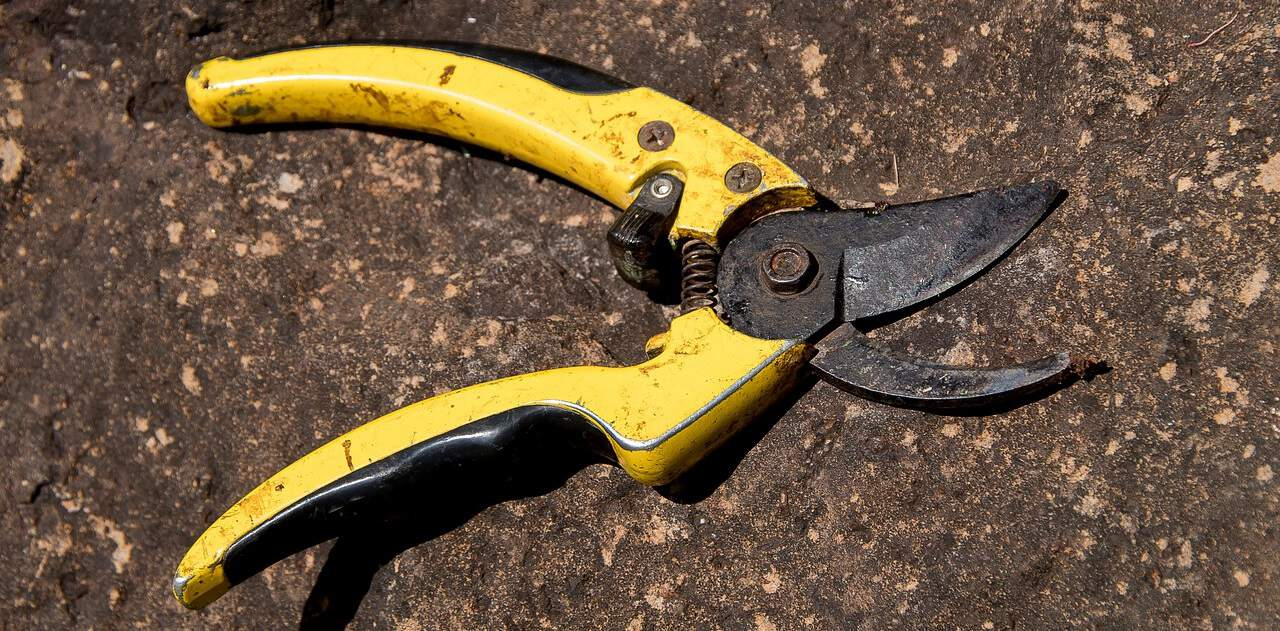 underrated-gardening-tools-need-2-secateurs