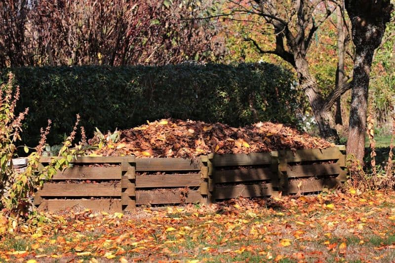 ways-to-create-a-sustainable-garden-5-start-a-compost-heap-pixabay